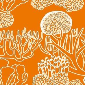 Coral (white on orange)