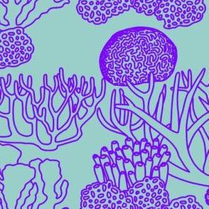 Coral (light purple on light teal)