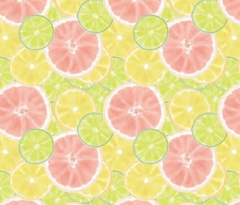 Citrus fabric by designsidestudio on Spoonflower - custom fabric