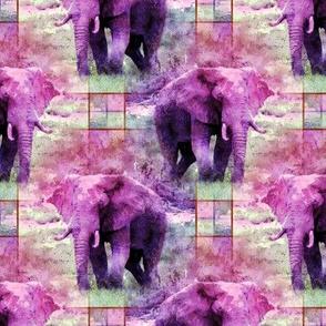 AFRICA WILD ELEPHANT promenade plaid pink
