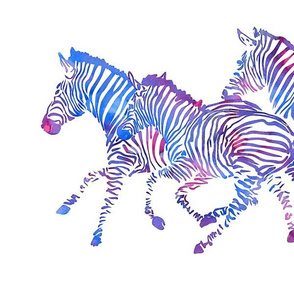 Running Purple Zebras
