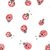Watercolor ladybug lady bird insect bug black white red_Miss Chiff Designs
