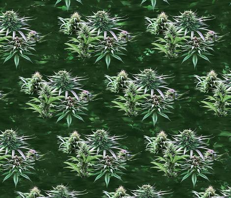 Fruitful Cannabis fabric by camomoto on Spoonflower - custom fabric