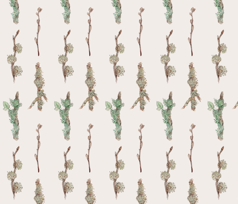Lichen_and_Moss fabric by crowntea on Spoonflower - custom fabric