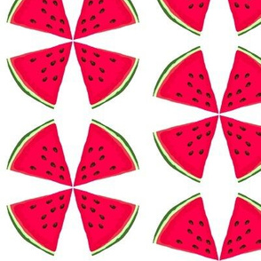 Summer Melon Wedges