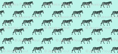 zebras on light blue
