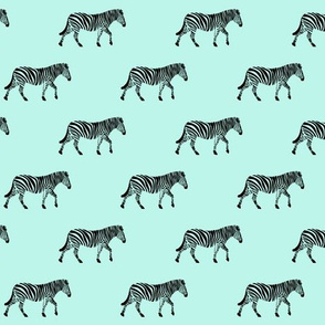 zebras on light blue