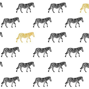 zebra with gold