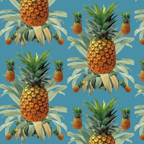 Pineapples beach Hawaii tropical blue
