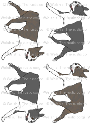 Trotting Boston Terrier border A - vertical small
