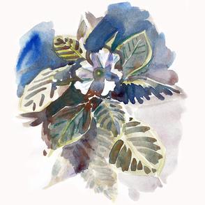 cestlaviv_floral_impatient_2017
