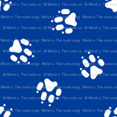 Trotting paw prints coordinate - patriotic blue