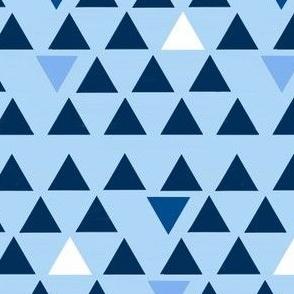 Triangle blued pa
