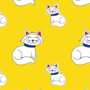 PRIMARY COLORS CAT