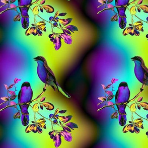 BIRDS ON A GLASS FENCE 2 bird rainbow sky PURPLE BLUE GLOWING SKY