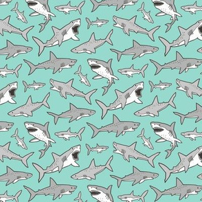 Sharks Shark Grey on Mint Green Smaller