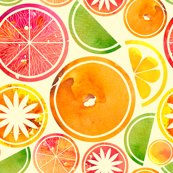 Rwatercolour_fruit_shop_thumb