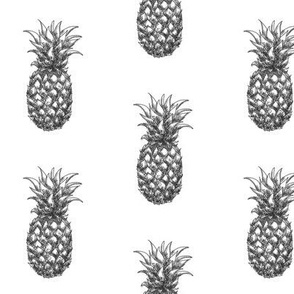 """3"""" Pineapples - black and white - monochrome"""