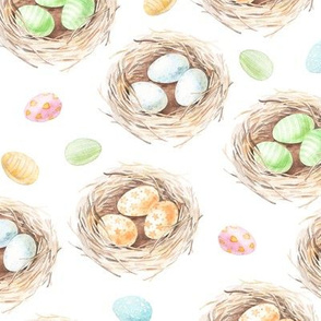 watercolor nest and eggs