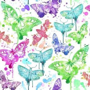 Splatter Drip Moths