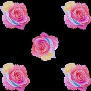 Multi_rose_blk