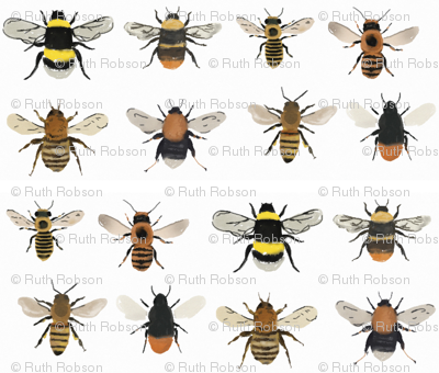 I'm going on a bee hunt // bumble bees and honey bees