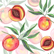 Watercolor peach  fruit