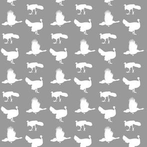 turkeys  on grey