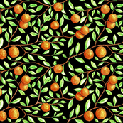 oranges in the tree (black)