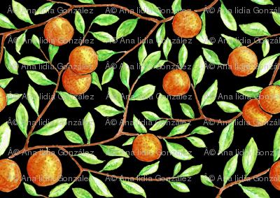 oranges in the tree (black)