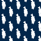 Bass // Navy (rotated 90)