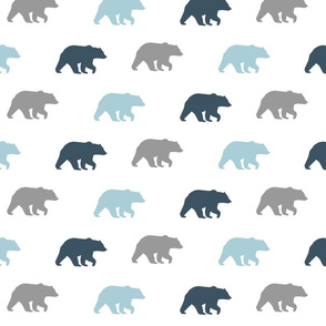 bear walk // Slate, grey & glacier water-ch