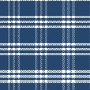 Vintage Navy Blue Plaid