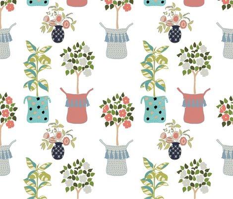 Rhouseplants_white_background-01_shop_preview