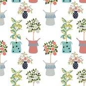 Rhouseplants_white_background-01_shop_thumb