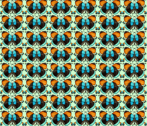 Butterfly 1 fabric by artbyalpach on Spoonflower - custom fabric