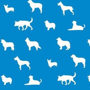 Sheepdogs Blue