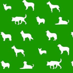 Sheepdogs Green