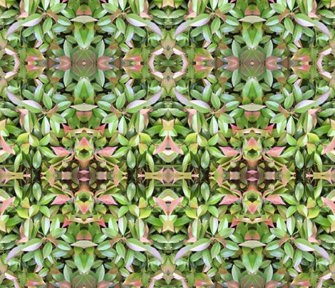 Leaf_Study_2 fabric by cedar_creek_studio on Spoonflower - custom fabric