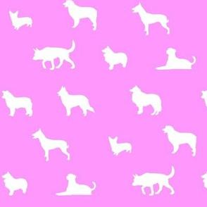 Sheepdogs LightPink