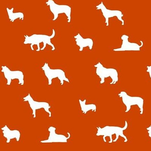 Sheepdogs Orange