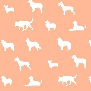 Sheepdogs Peach