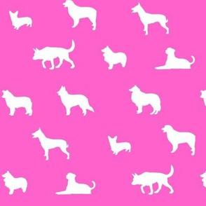 Sheepdogs Pink