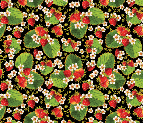 Watercolour Strawberries on black fabric by patriciasheadesigns on Spoonflower - custom fabric