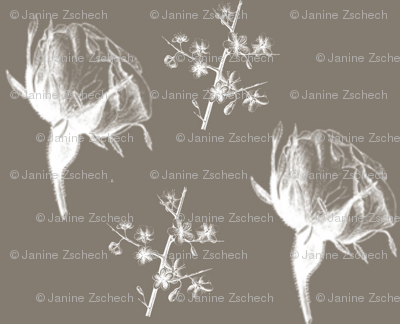 Rtaupe_flowers_and_stems_2_preview