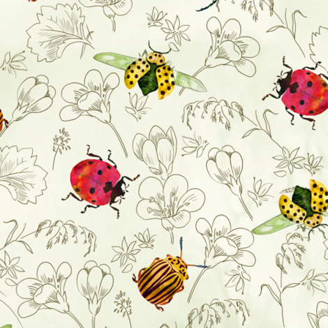 coleotteri fabric by gaiamarfurt on Spoonflower - custom fabric