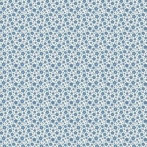 Generous blue