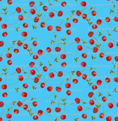 Cherry_Go_Round-06