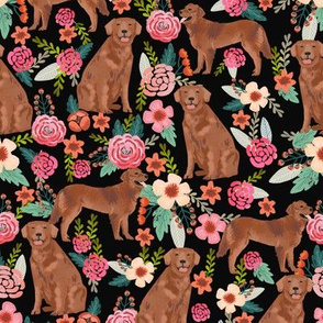 golden retriever fabric - red golden retriever dogs design cute dog fabric - black
