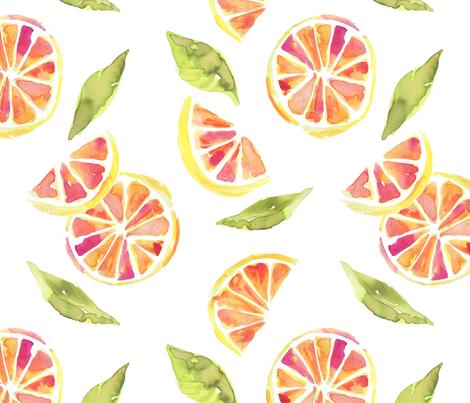 bloodorange_chloebulpin fabric by chloe_bulpin on Spoonflower - custom fabric